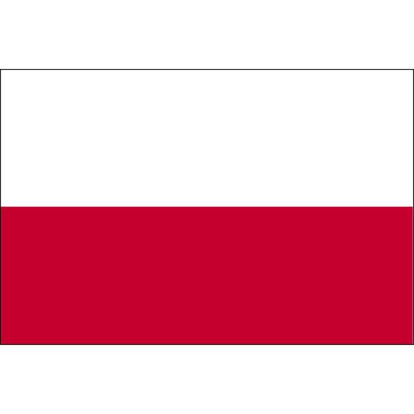 LOHACO - 東京製旗 ポーランド国...