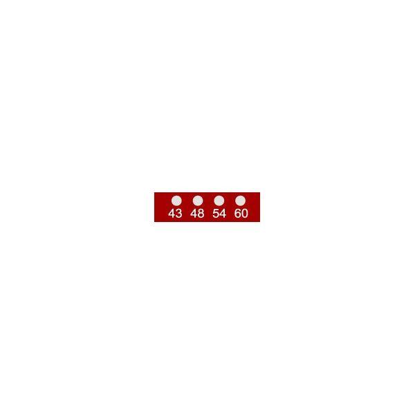 アイピー技研(IPL) テンプ・プレート 11mmx 3mm 10枚入 441-082 1ケース(10枚) 62-4861-29(直送品)