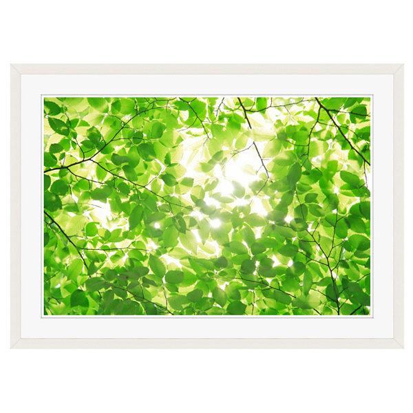 アートプリントジャパン 「新緑と光」 フレーム/XL/ホワイト 1枚