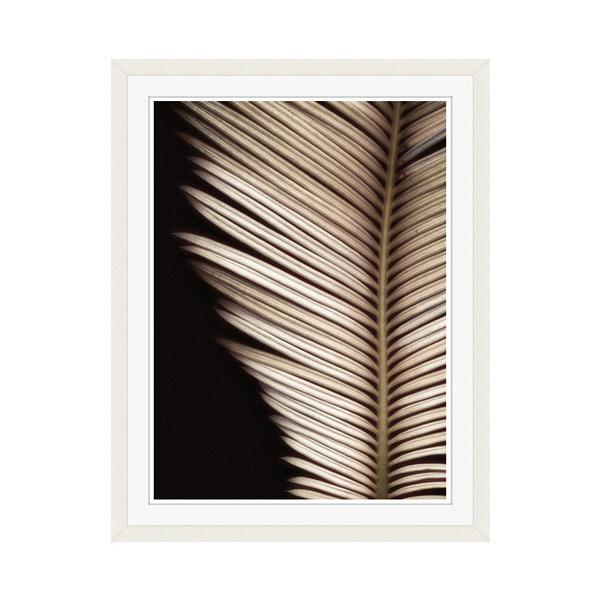 アートプリントジャパン 「Palmistry by Nathan Griffith」 フレーム/M/ホワイト 1枚