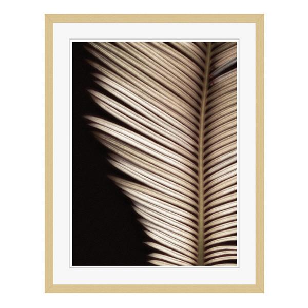 アートプリントジャパン 「Palmistry by Nathan Griffith」 フレーム/L/木目 1枚