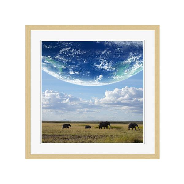 アートプリントジャパン 「地球とアフリカ象」 フレーム/L/木目 1枚