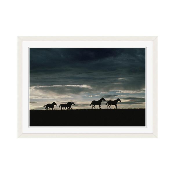 アートプリントジャパン 「馬の群れのシルエットと空(灰色)」 フレーム/M/ホワイト 1枚