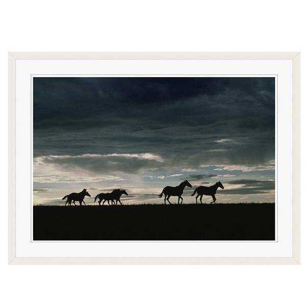 アートプリントジャパン 「馬の群れのシルエットと空(灰色)」 フレーム/XL/ホワイト 1枚