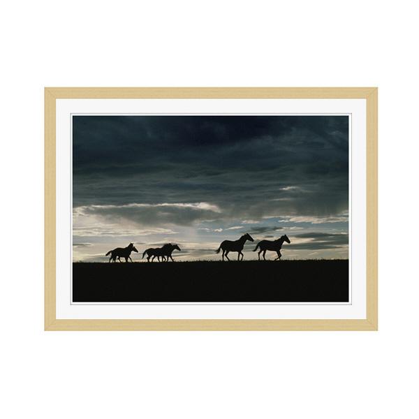 アートプリントジャパン 「馬の群れのシルエットと空(灰色)」 フレーム/M/木目 1枚