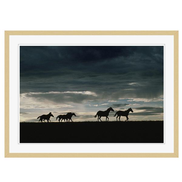 アートプリントジャパン 「馬の群れのシルエットと空(灰色)」 フレーム/XL/木目 1枚