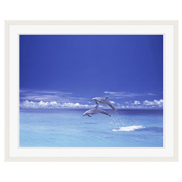 アートプリントジャパン 「青い海とイルカ」 フレーム/XL/ホワイト 1枚