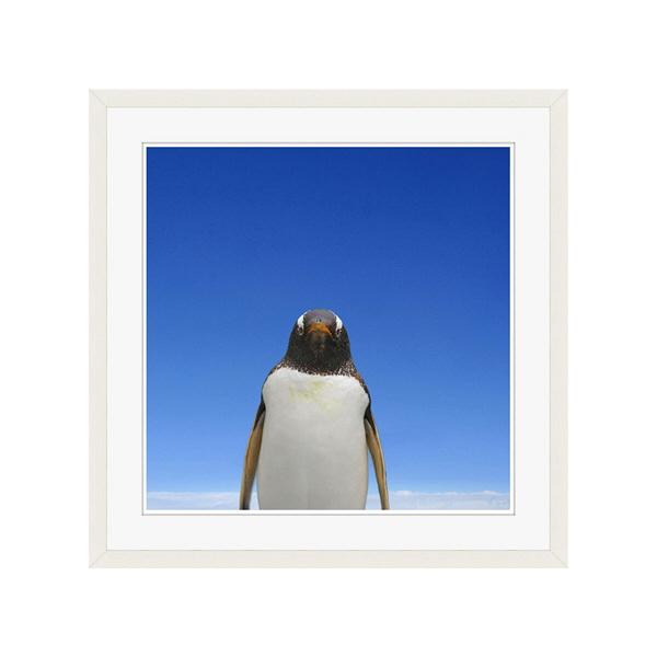 アートプリントジャパン 「青空とペンギン」 フレーム/L/ホワイト 1枚