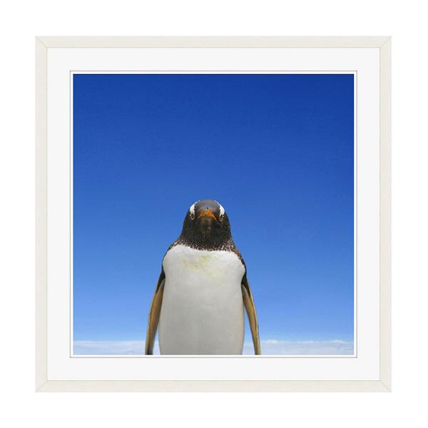 アートプリントジャパン 「青空とペンギン」 フレーム/XL/ホワイト 1枚