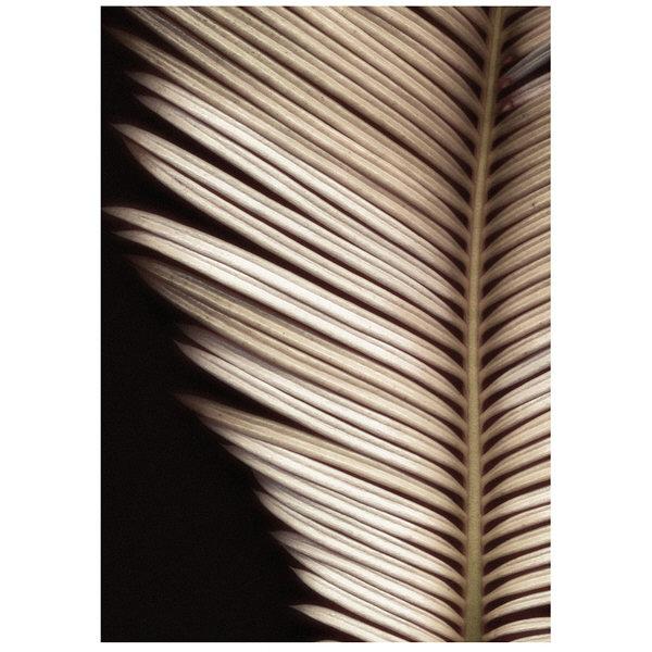 アートプリントジャパン 「Palmistry by Nathan Griffith」 キャンバス/S 1枚