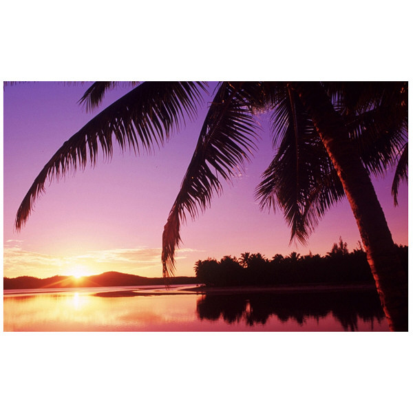 アートプリントジャパン 「Sunset in the Cook islands.」 キャンバス/S 1枚