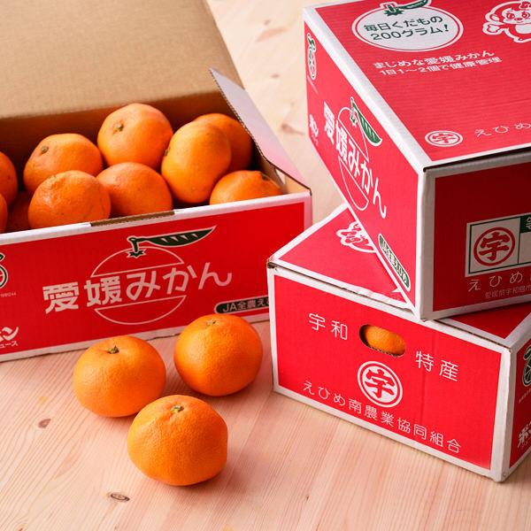愛媛南農協温州みかん 約3kg×3箱