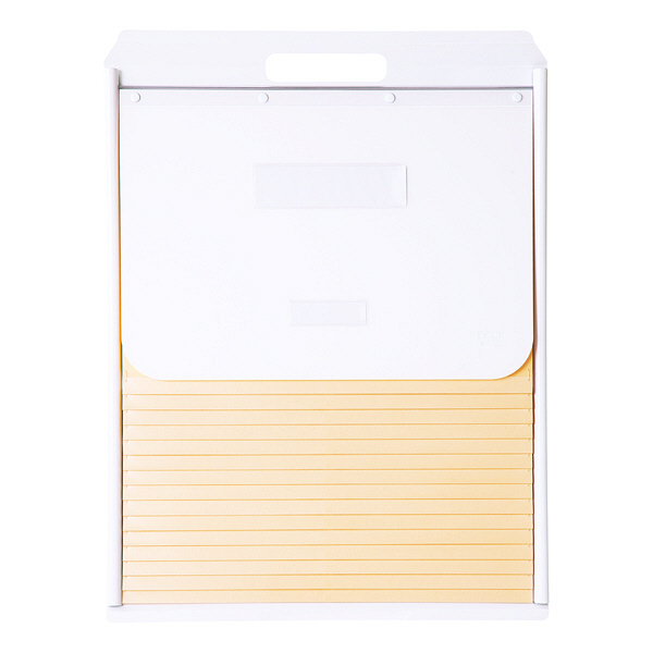 ケルン B4 スタンダード 15枚 ホワイト カーデックス KD504-W (直送品)