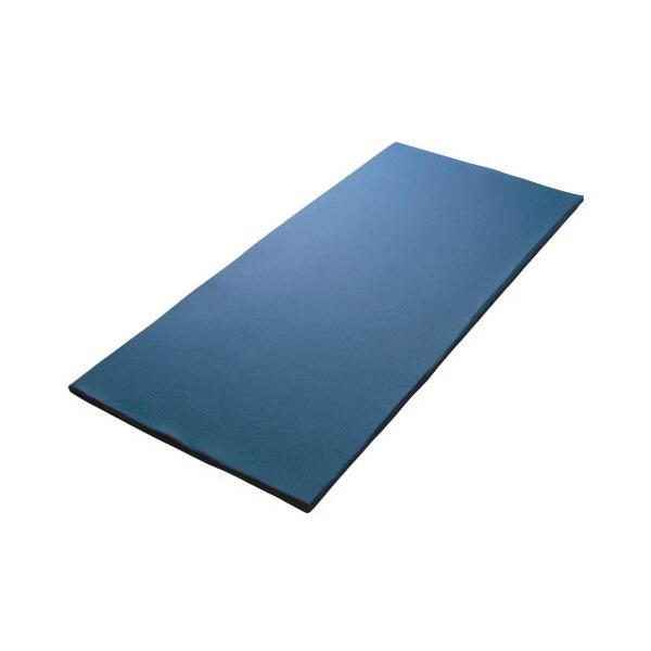 ムーラン エネタン事業部 エネタン床ずれ防止マット 本体 83×191×8.5 ブルー EMW003 1枚 (直送品)