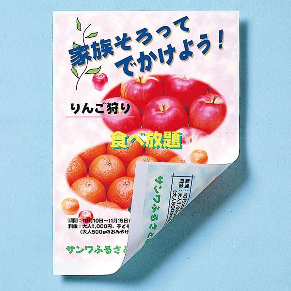 サンワサプライ インクジェット用両面印刷紙・厚手(大容量) JP-ERV5NA4-100 (直送品)