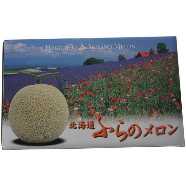 北海道富良野産 富良野メロン 2玉入