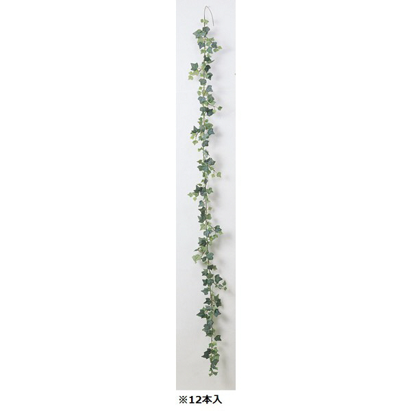 アイビーガーランド A-40719-051F 1箱(12本入) asca(アスカ) (直送品)