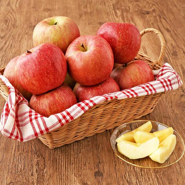 山形県産 わけあり早熟リンゴ5kg