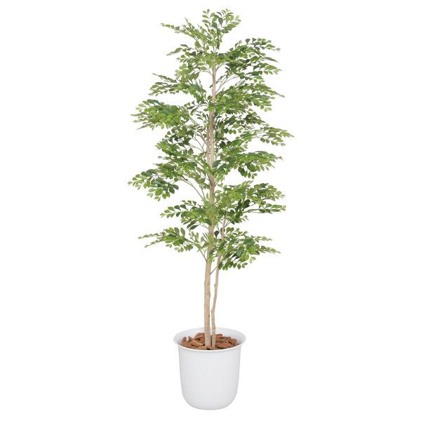 タカショー 人工観葉植物 ゴールデンリーフ  1.5m