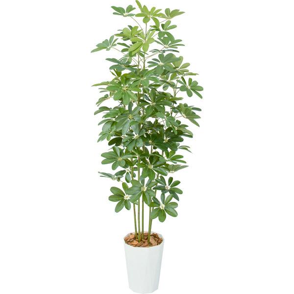 タカショー 人工観葉植物 シェフレラ  1.7m