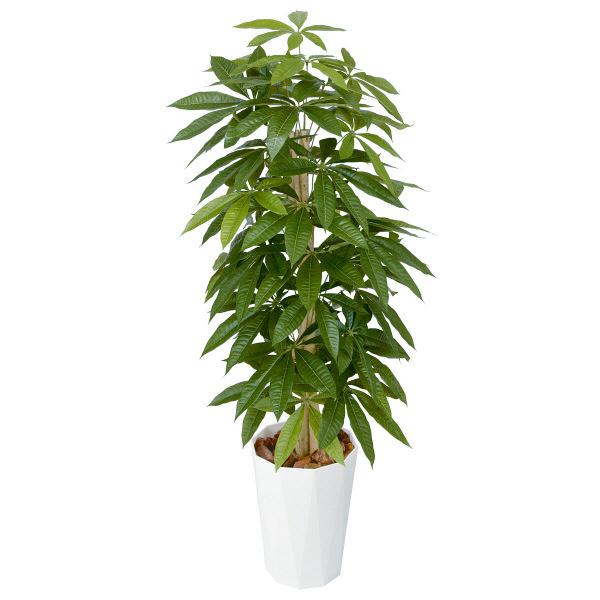 タカショー 人工観葉植物 パキラ  1.2m