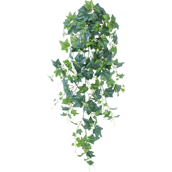 タカショー 人工観葉植物 アイビーハンギング 100cm 1セット(2本入 )