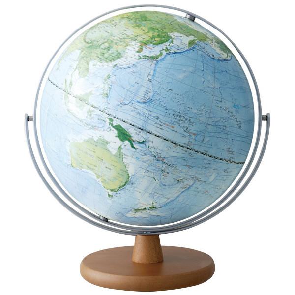 レイメイ藤井 地球儀 全回転 土地被覆タイプ 30cm OYV260 (直送品)
