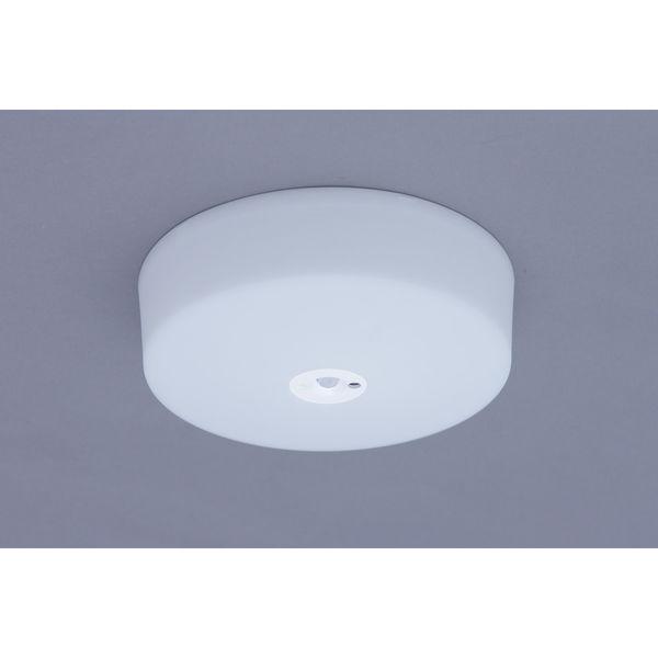アイリスオーヤマ 小型 750lmセンサー昼白色 シーリングライト SCL7NMS-E (直送品)