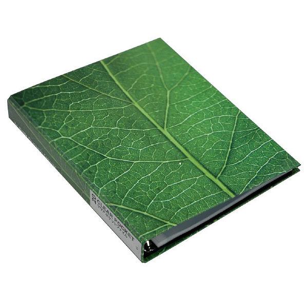 エトランジェ・ディ・コスタリカ A4ポケットファイル[GREEN]No2 GRNー18ー02 3冊 (直送品)