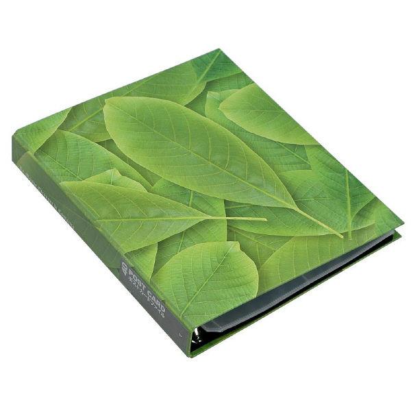 エトランジェ・ディ・コスタリカ A4葉書ファイル[GREEN]No1 GRNー20ー01 3冊 (直送品)