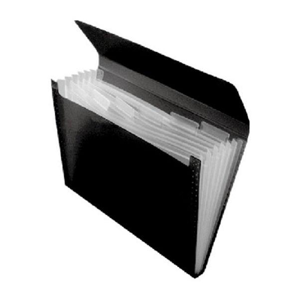 エトランジェ・ディ・コスタリカ エキスパンディングファイル[SOLID]ブラック SLDー97ー02 2冊 (直送品)