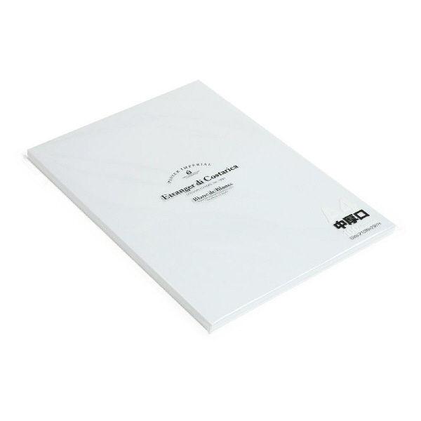 エトランジェ・ディ・コスタリカ A4ペーパー100[BdeB]スノー PR80ーA4ー01 10冊 (直送品)