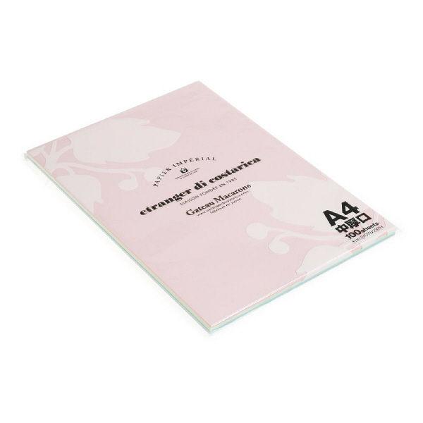 エトランジェ・ディ・コスタリカ A4ペーパー100[Macarons]アソート PRNA4ーMー51 5冊 (直送品)