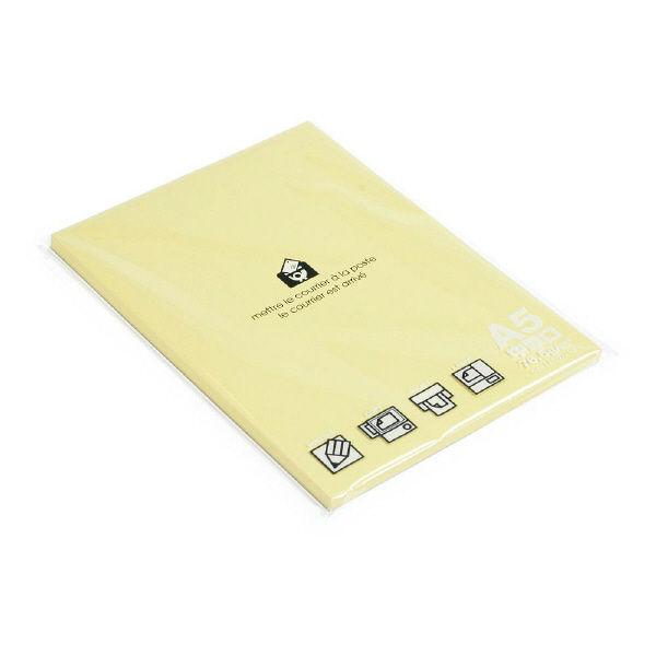 エトランジェ・ディ・コスタリカ A5ペーパー80[P]ヤマブキ PRNA5ーPー03 10冊 (直送品)
