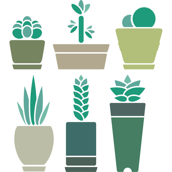東京ステッカー ウォールステッカー 大判 転写 人気 植物【多肉植物/BL/M】 TSー0024ーCM (直送品)