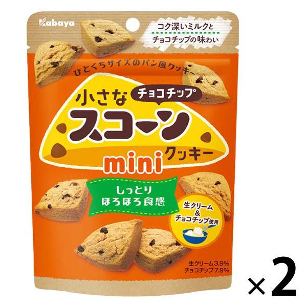 小さなスコーンクッキーミニ チョコチップ