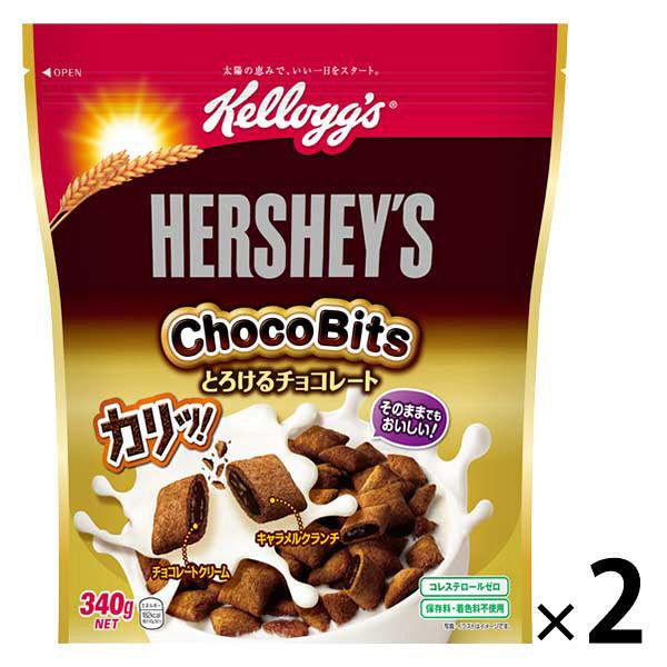 ハーシーチョコビッツ とろけるチョコ2個