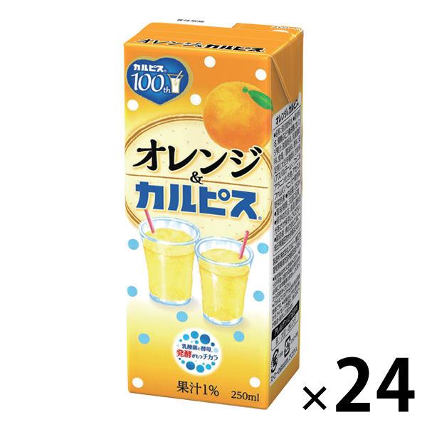 オレンジ&「カルピス」250ml