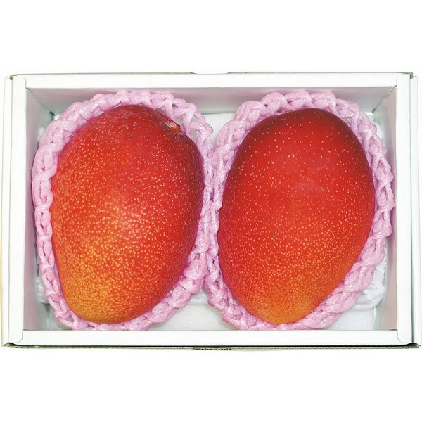 大和果園 国内産 アップルマンゴー