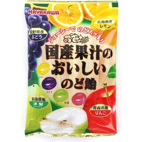 早川製菓 国産果汁おいしいのど飴 4902462006520 90G×20個(直送品)