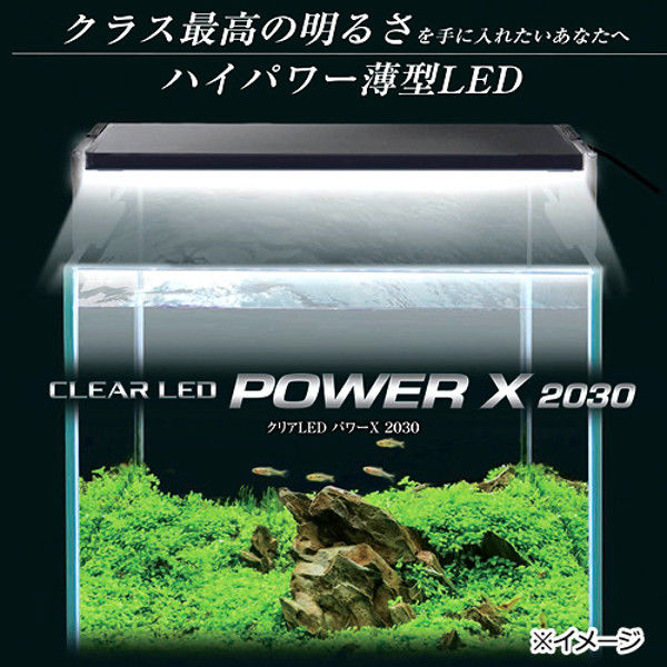 GEX(ジェックス) クリアLED POWER X 2030 331451 1個 (直送品)