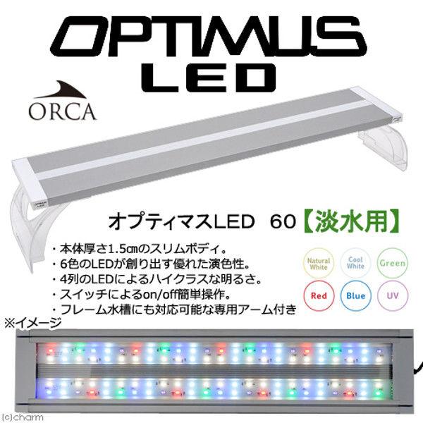 ORCA(オルカ) オプティマスLED 60 淡水用 60cm水槽用照明 ライト 熱帯魚 水草 394553 1個(直送品)