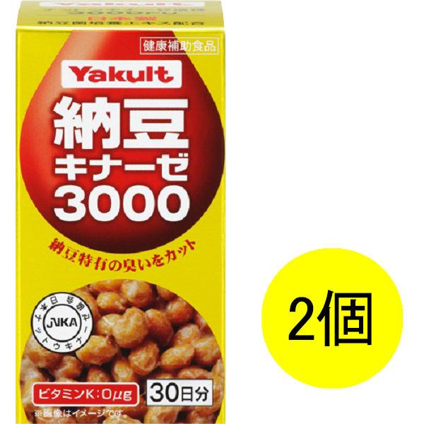 納豆キナーゼ3000 30日分×2個