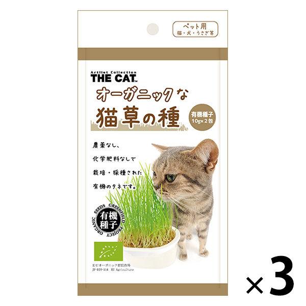 数量限定 オーガニックな猫草の種 2袋