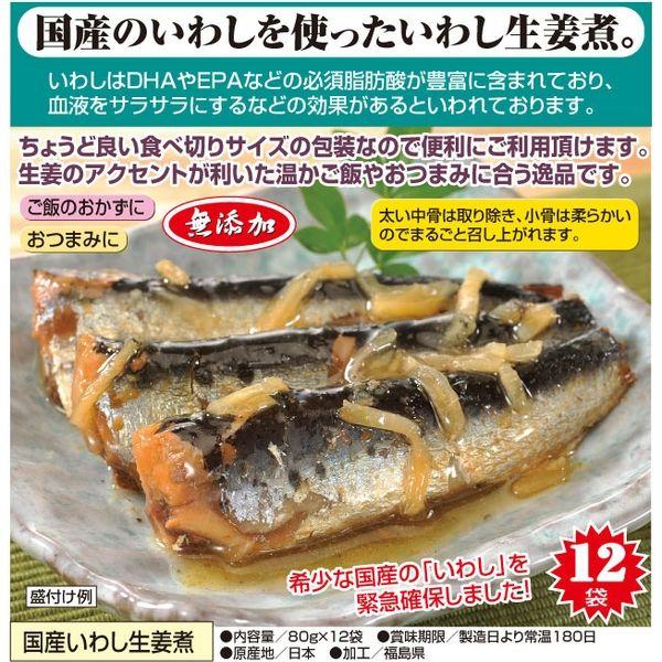 キッスビー健全食 国産いわし生姜煮 80g×12袋 a19441 1個(直送品)