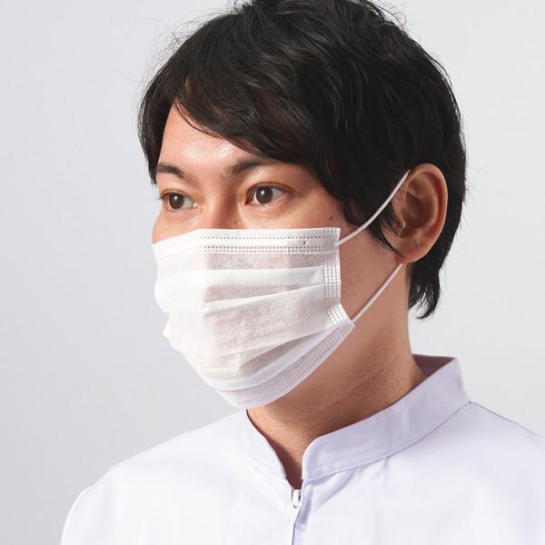 アスクル 2PLYマスク 100枚入