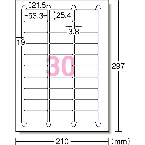エーワン ラベルシール 表示・宛名ラベル インクジェット マット紙 白 A4 30面 1袋(100シート入) 29192(取寄品)