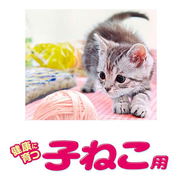 銀のスプーン 子猫まぐろかつお 4袋