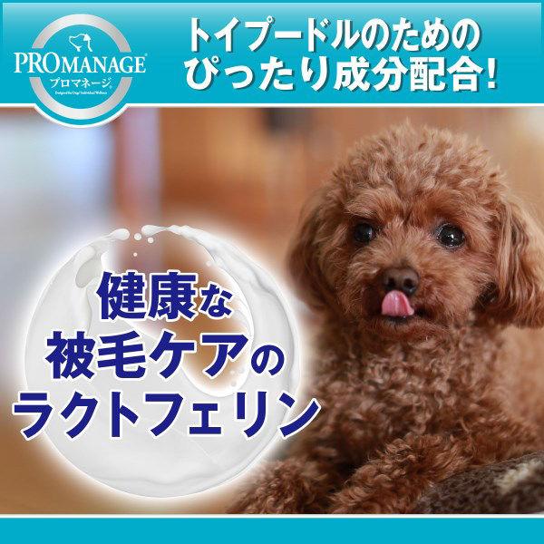 プロマネージ トイプードル成犬1.7kg