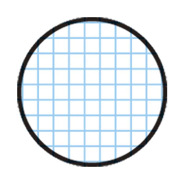 アピカ 方眼紙 A4 1ミリ方眼 ホウ12 (直送品)